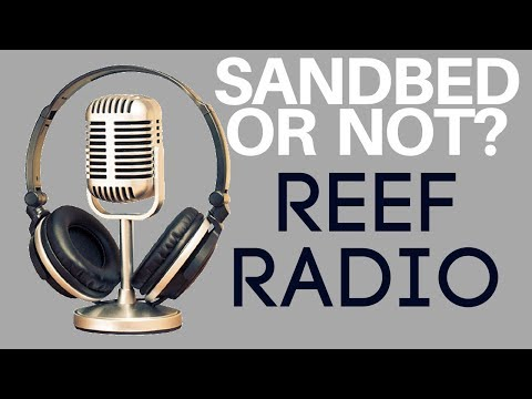Rotter Tube Reef saltwater tank channel updates REEF RADIO LIVE STREAM