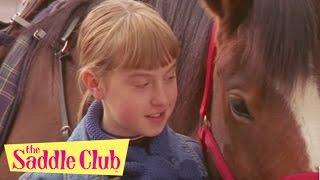 Saddle Club - The Saddle Club and Work Horses | Saddle Club Season 1 | Full Episodes