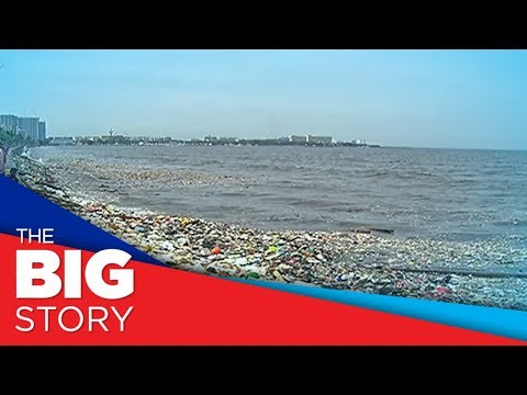 DENR divides Manila Bay cleanup into 4 areas