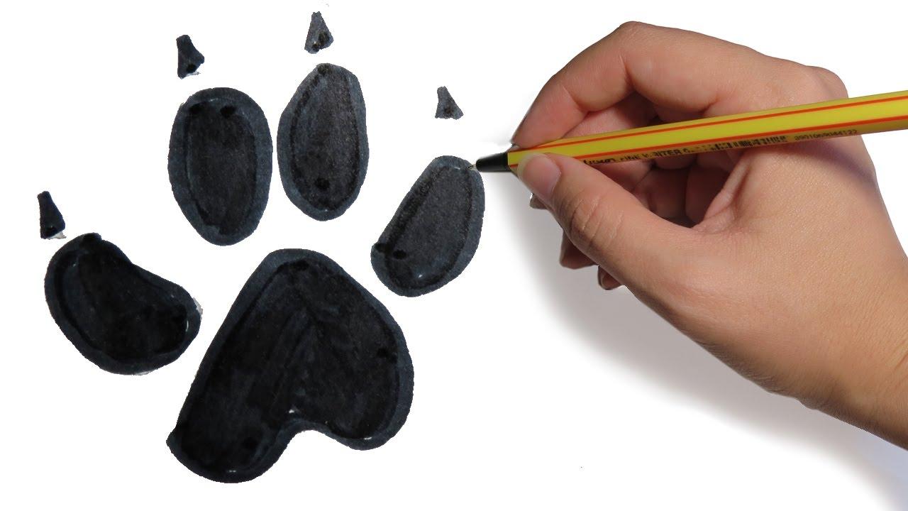 Como Dibujar Huellas De Perro Fácil Paso A Paso