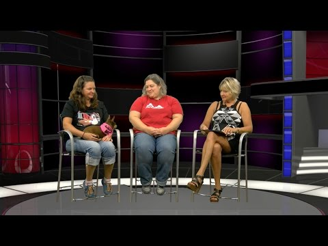 30 Minutes: Lowell Humane Society