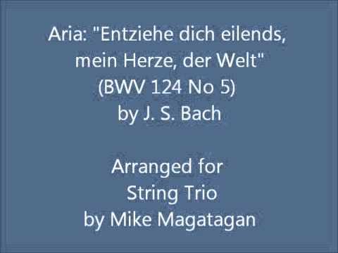"""Aria: """"Entziehe dich eilends, mein Herze, der Welt"""" (BWV 124 No 5) for String Trio"""