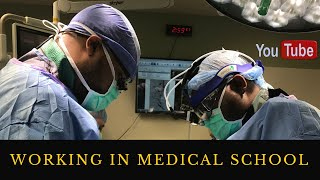 Do Medical Students Work in Medical School?