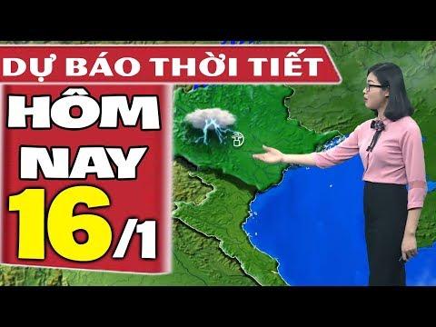 Dự báo thời tiết hôm nay mới nhất ngày 16/1 | Trời Mưa Rét | Dự báo thời tiết 3 ngày tới