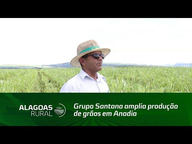 Grupo Santana amplia produção de grãos em Anadia