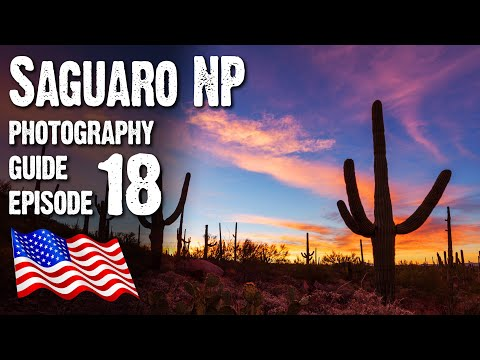 Landscape Photography USA - Saguaro National Park West, Arizona