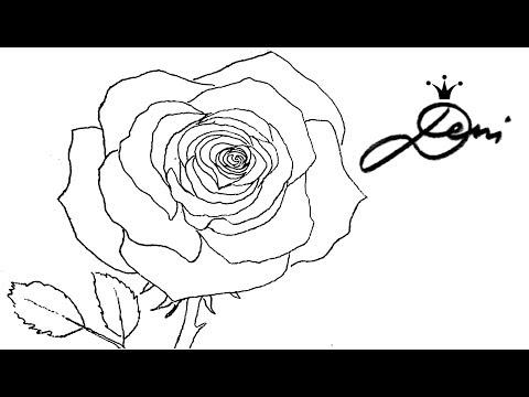 Rose Schnell Zeichnen Lernen Mit Bleistift 1 Vorzeichnung