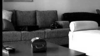 A Empregada limpando a casa - 1