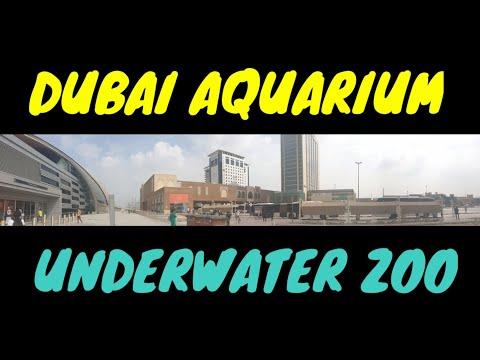 JALAN-JALAN KE DUBAI AQUARIUM & UNDERWATER ZOO DI DUBAI MALL