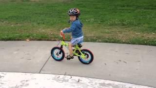 Strider PreBike to 12 inch pedal bike (or future Tour de France winner)
