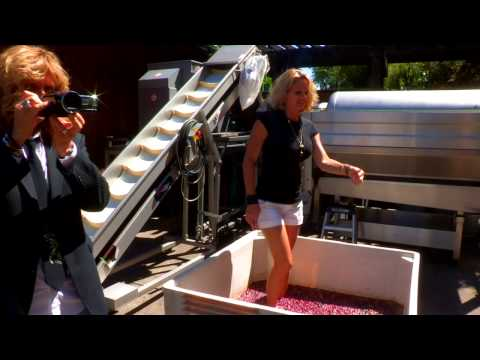 Zan media presents Grape Stomping with David and Cindy Coverdale