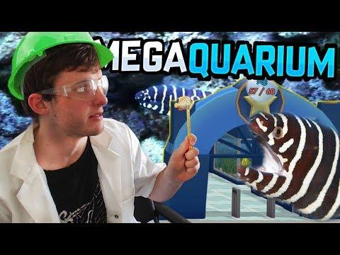 We Make an EEL-ECTRIFYING Aquarium! (and make dozens of amateur mistakes)