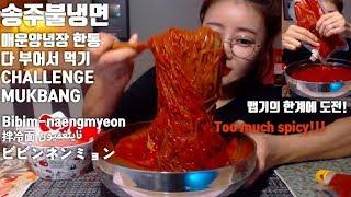 [ENG]송주불냉면 매운양념장 한통 다 부어먹기 도전! 먹방 Challenge mukbang spicy Bibim-naengmyeon 拌冷面 ビビンネンミョンناينغميون