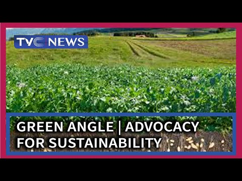Green Angle | Advocacy for sustainability