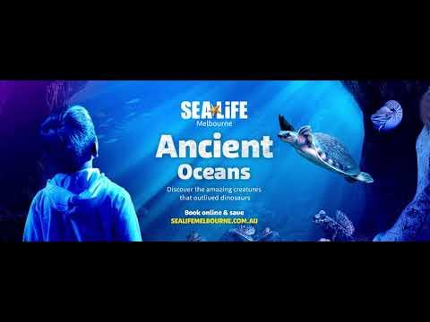 SLM Ancient Oceans Flinders 2880x1080px Final