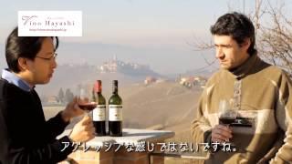 バローロ、グイドポッロをランゲの丘で試飲