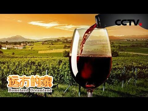 《远方的家》一带一路(475)格鲁吉亚 朋友来了有美酒  20190411 | CCTV中文国际