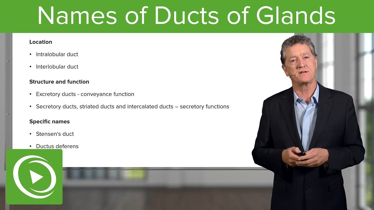 Names of Ducts of Glands – Histology | Lecturio