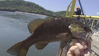 smallmouth bass fishing video on 05/04/2012 at the hannibal tailwaters on the Ohio River(Wendy and I catch a few smallies and other fish on the Ohio in early may of 2012. All were released unharmed Fishing