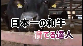 5年に一度しか開催されない「和牛のオリンピック」。2007年、その和牛オ...