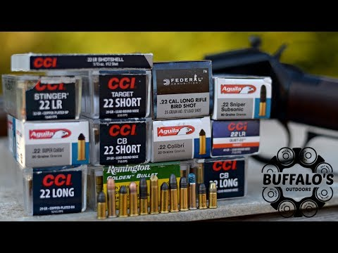 Henry .22 Lever Action Cycling A Variety Of Ammo