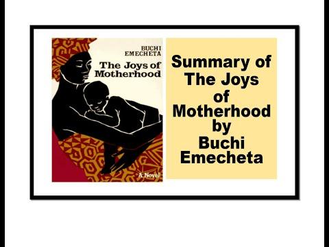 Summary of The Joys of Motherhood by Buchi Emecheta