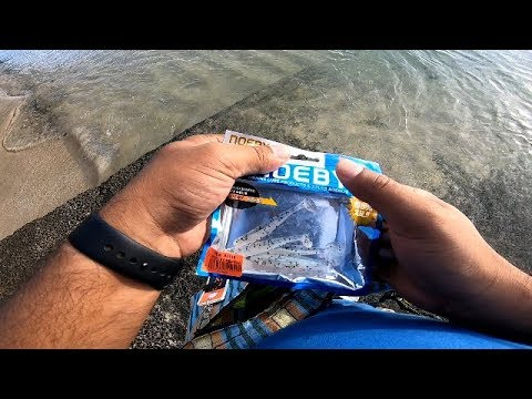 S18ep29- How To Catch Fish On The Noeby Soft Lure From Shore..