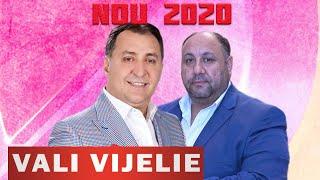 VALI VIJELIE si SANDU VIJELIE - ORICAT AI FII TU DE SUS 2020