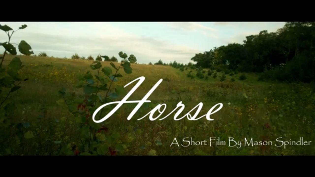 "Horse ""My RØDE Reel 2020"""