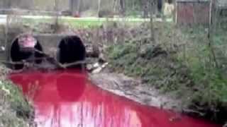 WATERS Turns BLOOD Worldwide! SEAS, RIVERS, LAKES, RAIN: Australia , Russia ,China, USA, India, .