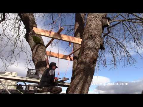 How To Build A Treehouse   8 Wranglerstar