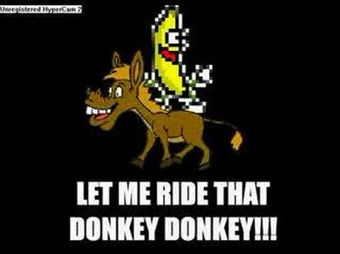 let me ride the donkey -.-