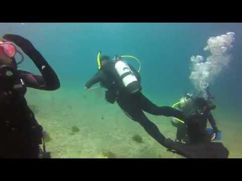 2nd SCUBA Open Water Certification Dive