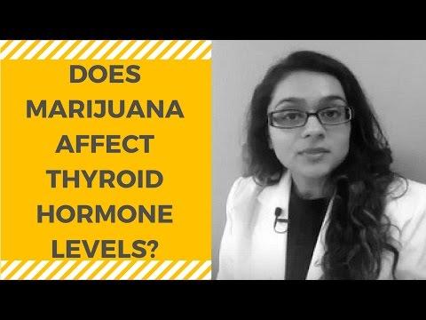Medical Marijuana and Thyroid Hormone Levels
