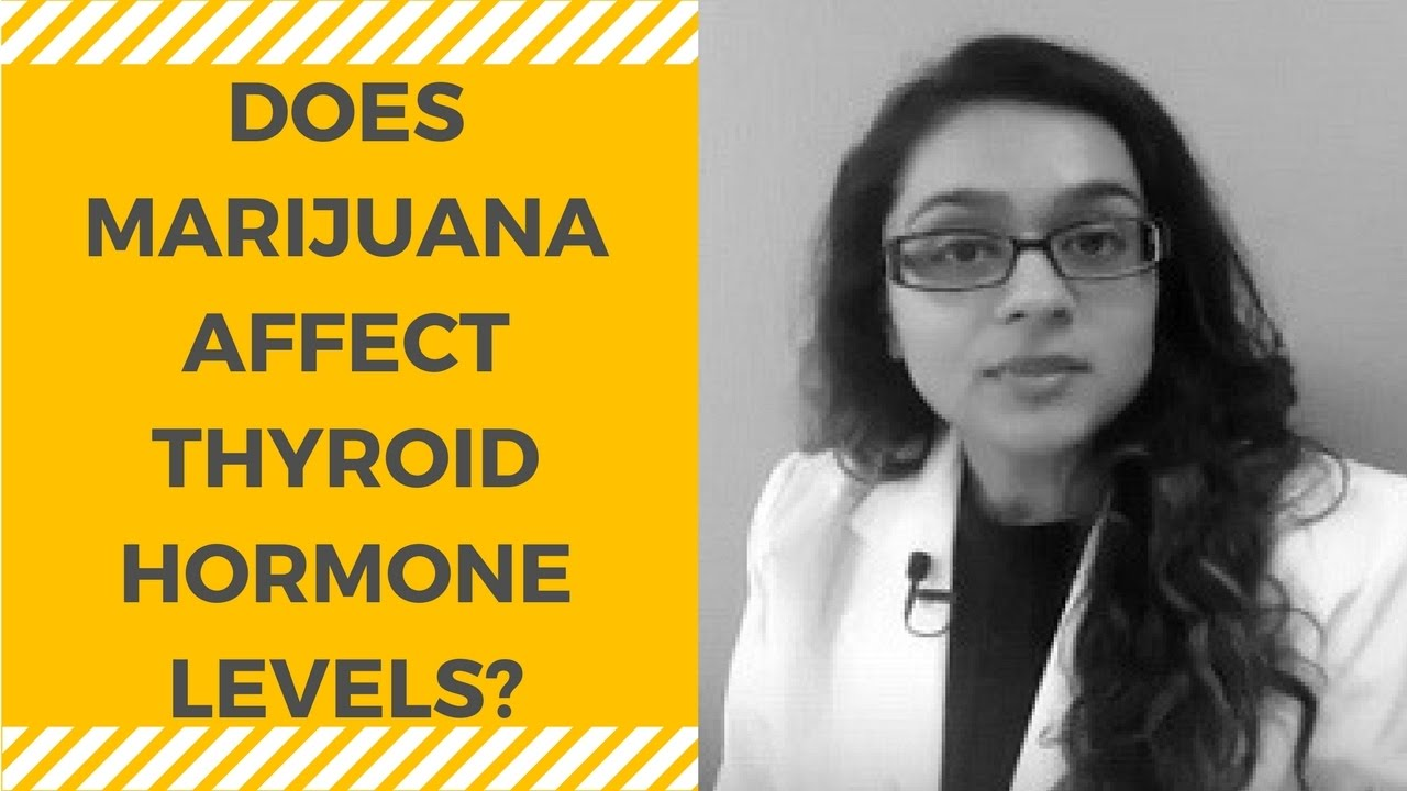 Image result for Can Medical Marijuana Affect Thyroid Health?