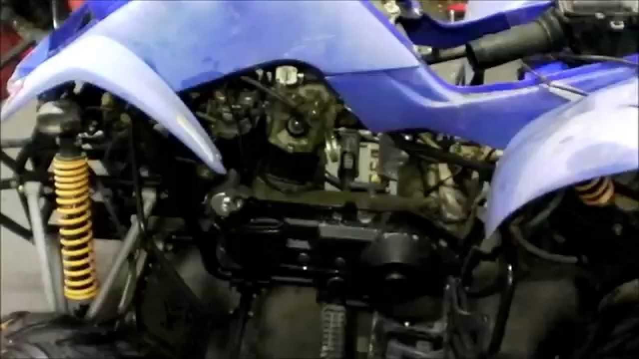 Kazuma Falcon 250cc update on