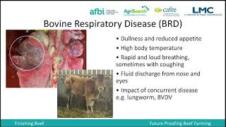 Animal Health Planning for Housing - Lindsey Drummond (AFBI)