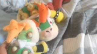 Bowsers biggest fear episode 1