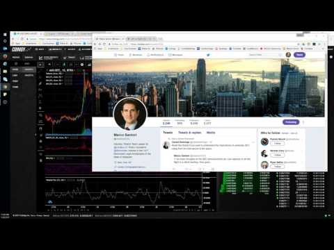 SEC ICO Report and Crypto Market - ANS ( NEO ) trading trend, patience is required!