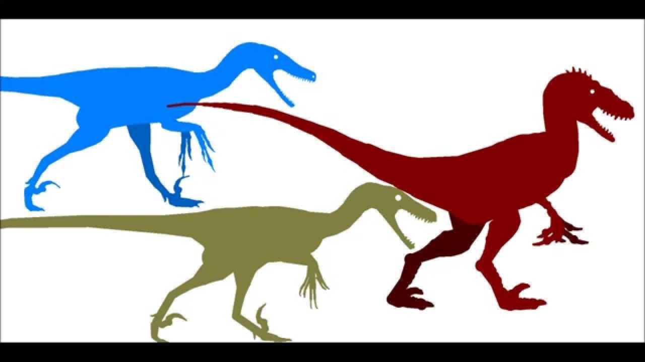 Utahraptor vs Deinonychus vs Velociraptor - YouTube