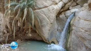 Тунис (видео проект Андрея Филиппова