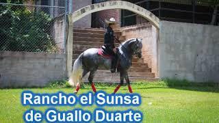 Guayo Duarte rancho el sunza