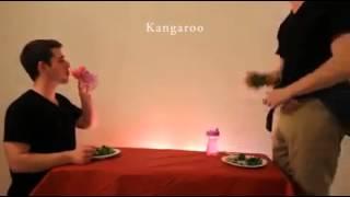 Jak jedzą zwierzęta