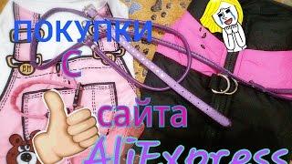 ПОКУПКИ ДЛЯ СОБАКИ С AliExpress/Покупки с сайта AliExpress