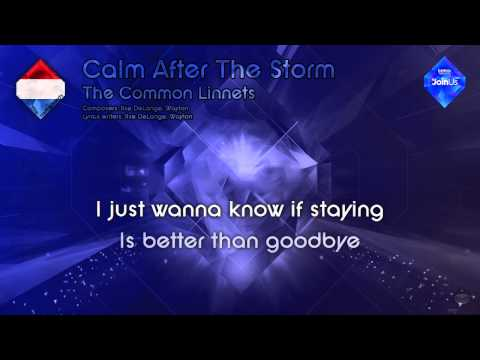 """The Common Linnets - """"Calm After The Storm"""" (The Netherlands) - [Instrumental version]"""