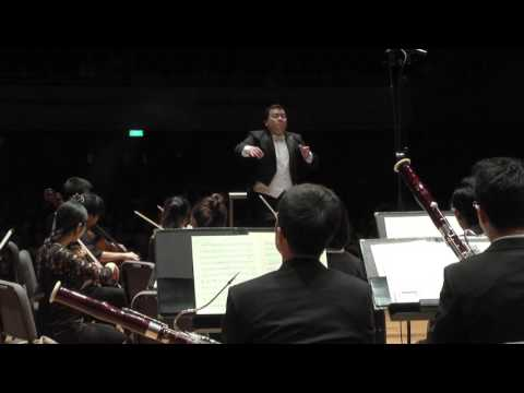 SCHUBERT 5th Symphony (Conductor's view)
