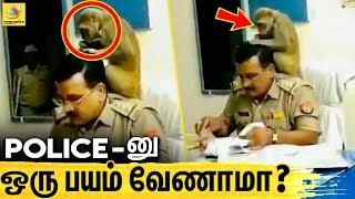 Police-னு கூட ஒரு பதட்டமில்லை ! | Monkey Play With Police Inspector, Animals love