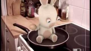 Bunnies Can't Cook Eggs