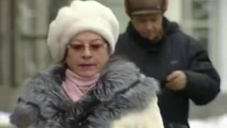 Вести-Хабаровск. Обман на миллион