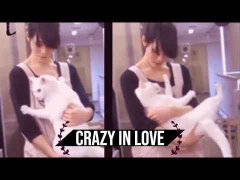 [NEKO TIME] crazy japanese cat loves his human –  池袋のねころび Cat Cafe